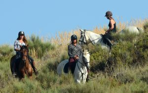 horse-trekking-riding-andalucia-spain-95