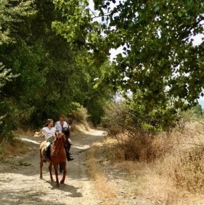 Riding with Horsebackriding in Spain